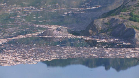 Splinters of wood float in a lake at Mt. St. Helen Stock Video Footage
