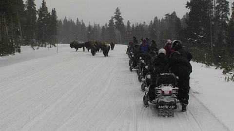 Snowmobiles park along a road in Yellowstone Natio Stock Video Footage