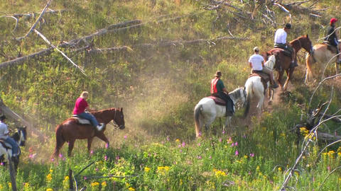 Horses and riders take a pack trip through the wil Stock Video Footage