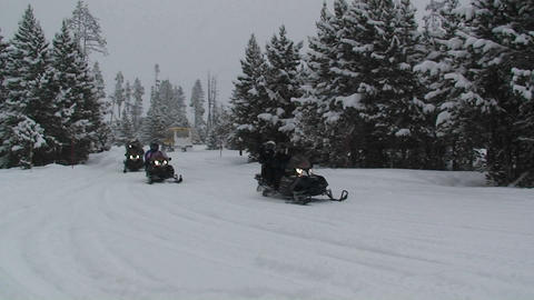 Snowmobiles move through a forest scene Stock Video Footage