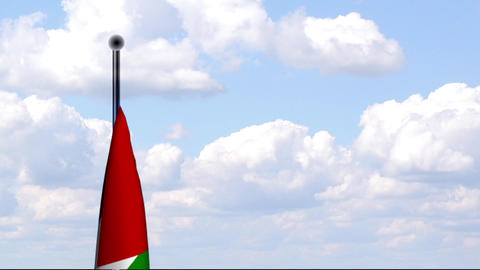 Animated Flag of Palestinian Territories Stock Video Footage
