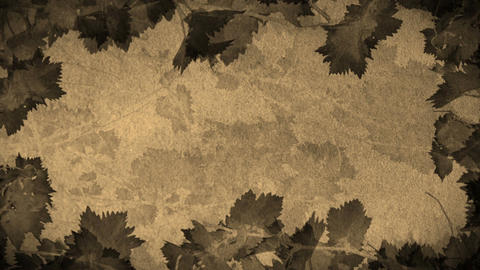 Vine Leaves Animation