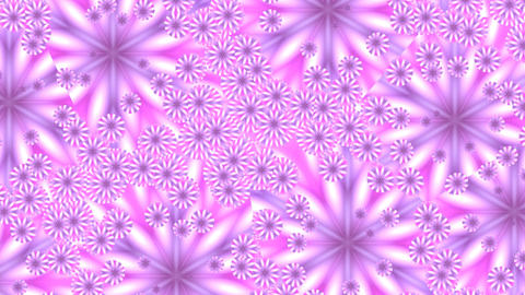 Pink flowers in mirror splinters Animation