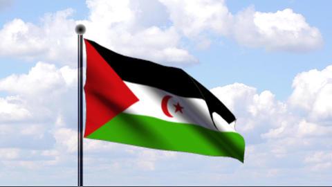 Animated Flag of Sahara Stock Video Footage