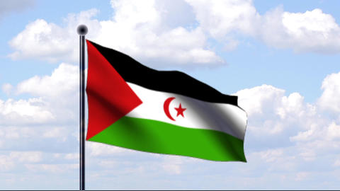 Animated Flag of Sahara Stock Video Footage