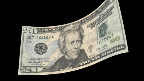 US 20 Dollar Bill blowing in the wind Stock Video Footage