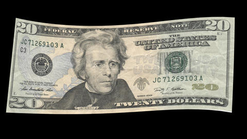 US 20 Dollar Bill blowing in the wind Animation