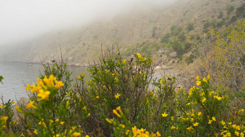 Hidden beach in the mountains in the fog Stock Video Footage