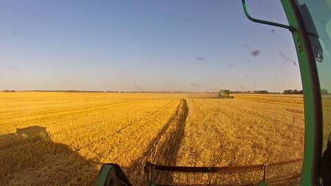 Meeting of combine harvesters in field Stock Video Footage