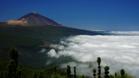 Teide Volcano #4 Footage