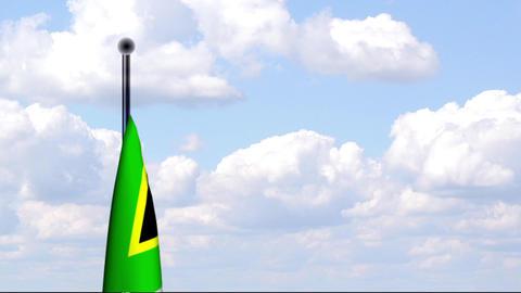 Animated Flag of South Africa / Südafrika Stock Video Footage