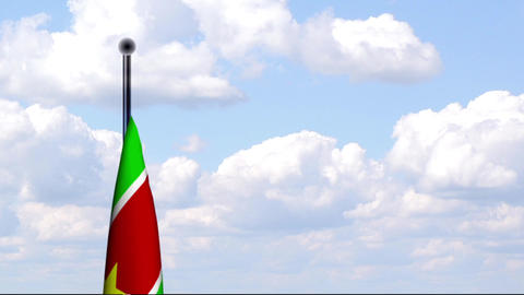 Animated Flag of Suriname / Animierte Flagge von S Stock Video Footage