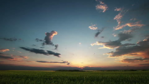 Sunset on field Stock Video Footage