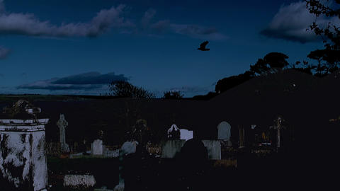 Raven Flying Over Graveyard At Night stock footage