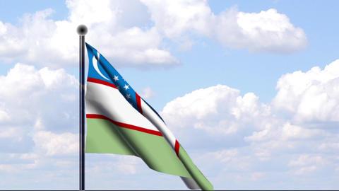 Animated Flag of Uzbekistan / Usbekistan Stock Video Footage
