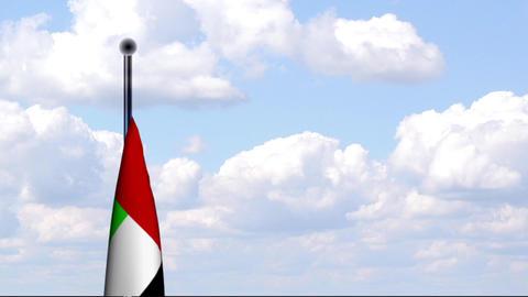 Animated Flag of United Arab Emirates Stock Video Footage