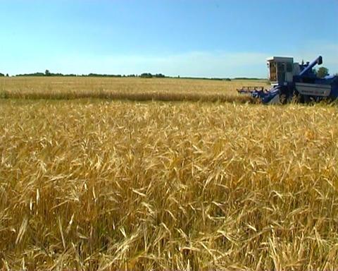 Farming Stock Video Footage