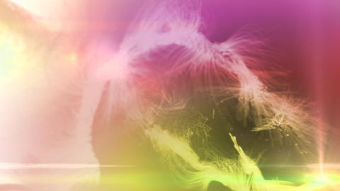 Fur Background Color Mix 2 stock footage