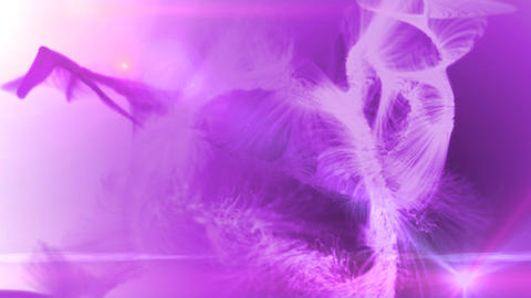fur background pink Stock Video Footage