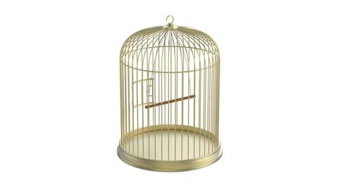 Bird cage Stock Video Footage