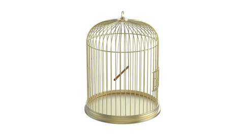 Bird cage Animation