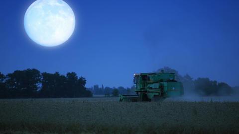 Night harvesting Stock Video Footage
