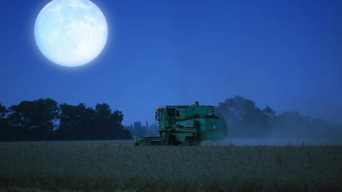 Night harvesting Stock Video Footage