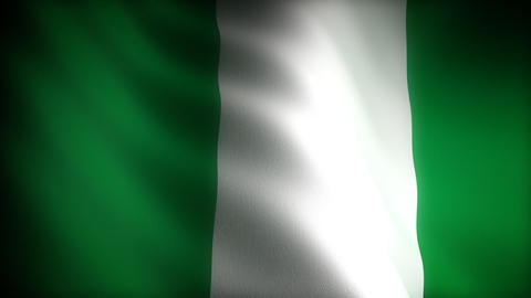 Flag of Nigeria Stock Video Footage
