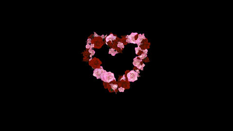 Roses In Heart Formation stock footage