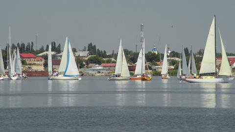 Great sailing regatta Stock Video Footage