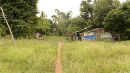 Path to a Run-Down House in Rural Thailand Stock Video Footage