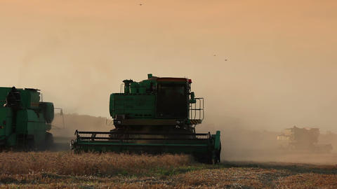 Movement of harvesters Stock Video Footage