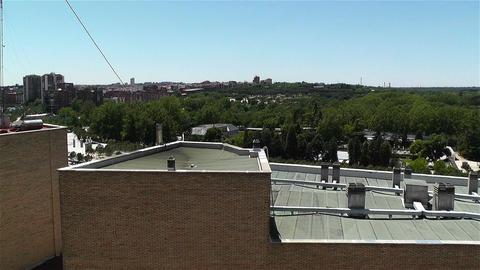 Madrid Casa de Campo 1 Stock Video Footage