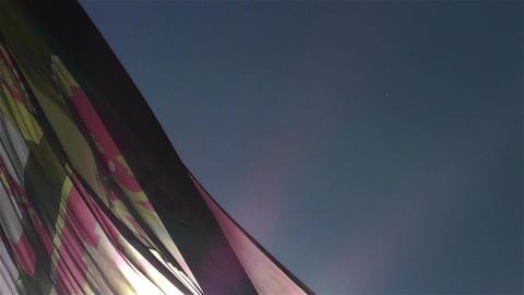 Spanish Flag native slowmotion 5 Stock Video Footage