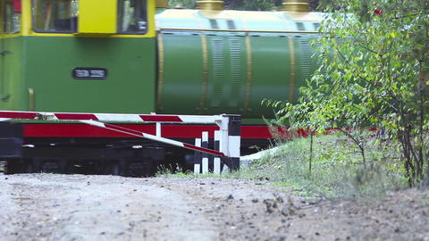 Commemorative train Stock Video Footage