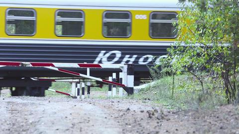 Commemorative train Stock Video Footage