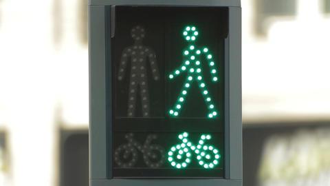 Pedestrians signal Footage
