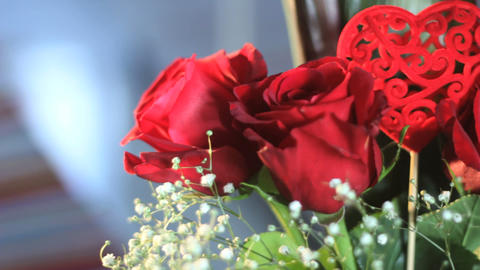 Red roses Stock Video Footage