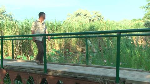 An elderly man goes on a wooden bridge Stock Video Footage