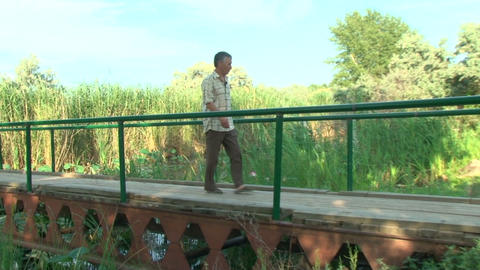 An elderly man goes on a wooden bridge Stock Video Footage