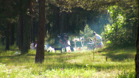 Family picnic in the forest Stock Video Footage