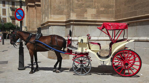 old-fashioned classic horse carriage waiting for t Stock Video Footage