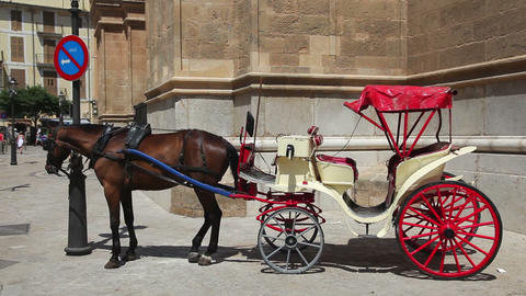 old-fashioned classic horse carriage waiting for t Footage