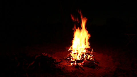 Nighttime campfire Stock Video Footage