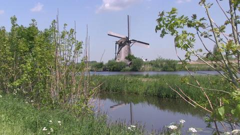 Dutch windmills at Kinderdijk Stock Video Footage