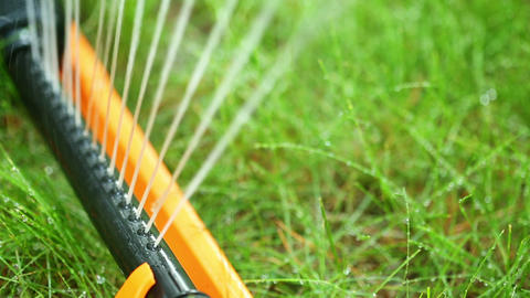 Watering the lawn Stock Video Footage