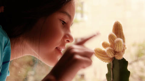Girl and cactus Stock Video Footage