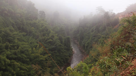 Fog River Stock Video Footage