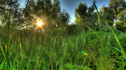 Sunrise Meadow. HDR Timelapse Shot Motorized Slide Stock Video Footage