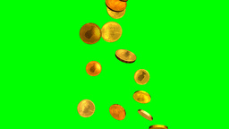 Gold Coins Money Fall Green Screen Stock Video Footage